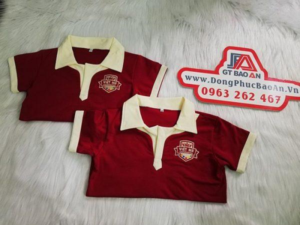 Áo thun đồng phục học sinh trường quốc tế Việt Mỹ 04