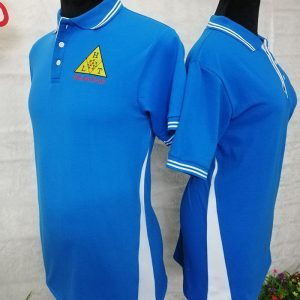 Áo thun cổ bẻ đồng phục cao cấp công ty Ha Lan Tech 03