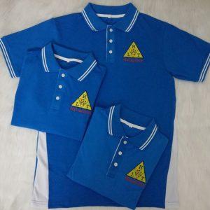 Áo thun cổ bẻ đồng phục cao cấp công ty Ha Lan Tech 04