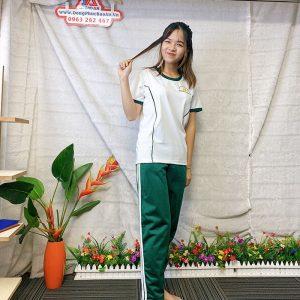 Đồng phục thể dục - Áo thun học sinh trường Nguyễn Thái Bình 010