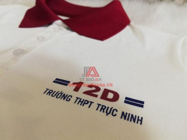 Mẫu Áo Đồng Phục Họp Lớp , Áo Thun Kỷ Niệm 20 Năm Ra Trường Lớp 12D Trường THPT Trực Ninh